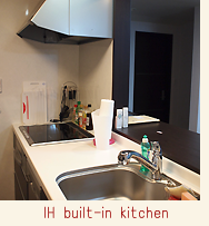 IH built-in kitchen