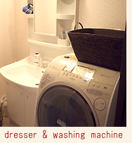 dresser and washing machine